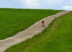 pushing-bike