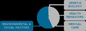 Social Determinants of Health Pie Chart