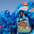 Mardi Gras Indian Culture